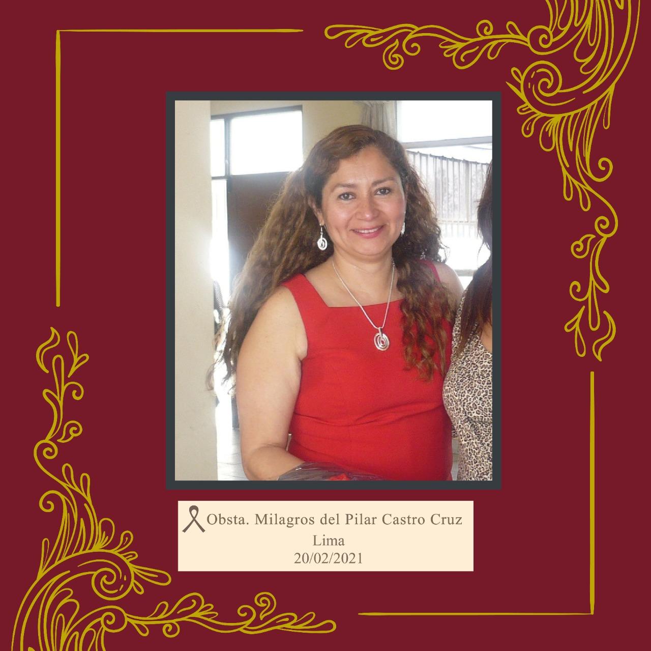 Milagros del Pilar Castro Cruz