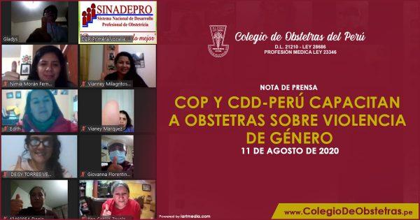 COP Y CDD-PERÚ CAPACITAN A OBSTETRAS SOBRE VIOLENCIA DE GÉNERO
