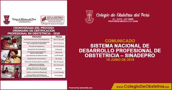 SISTEMA NACIONAL DE DESARROLLO PROFESIONAL DE OBSTETRICIA – SINADEPRO