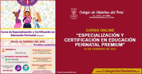 «Curso de Especialización y Certificación en Educación Perinatal Premium»