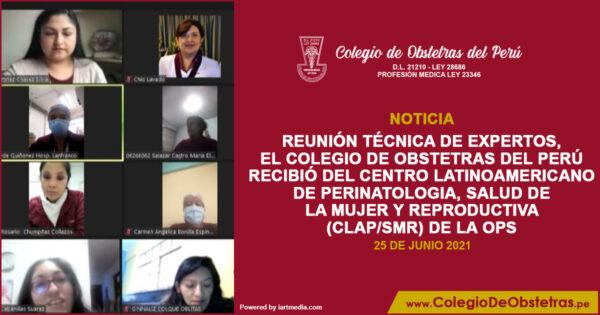 En reunión técnica de expertos, el COP recibió del CLAP/SMR la iniciativa sobre historia clínica en la anticoncepción