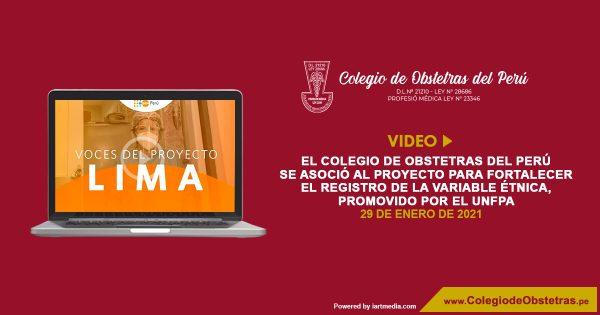 El Colegio de Obstetras del Perú se asoció al proyecto para fortalecer el registro de la variable étnica, promovido por el UNFPA.
