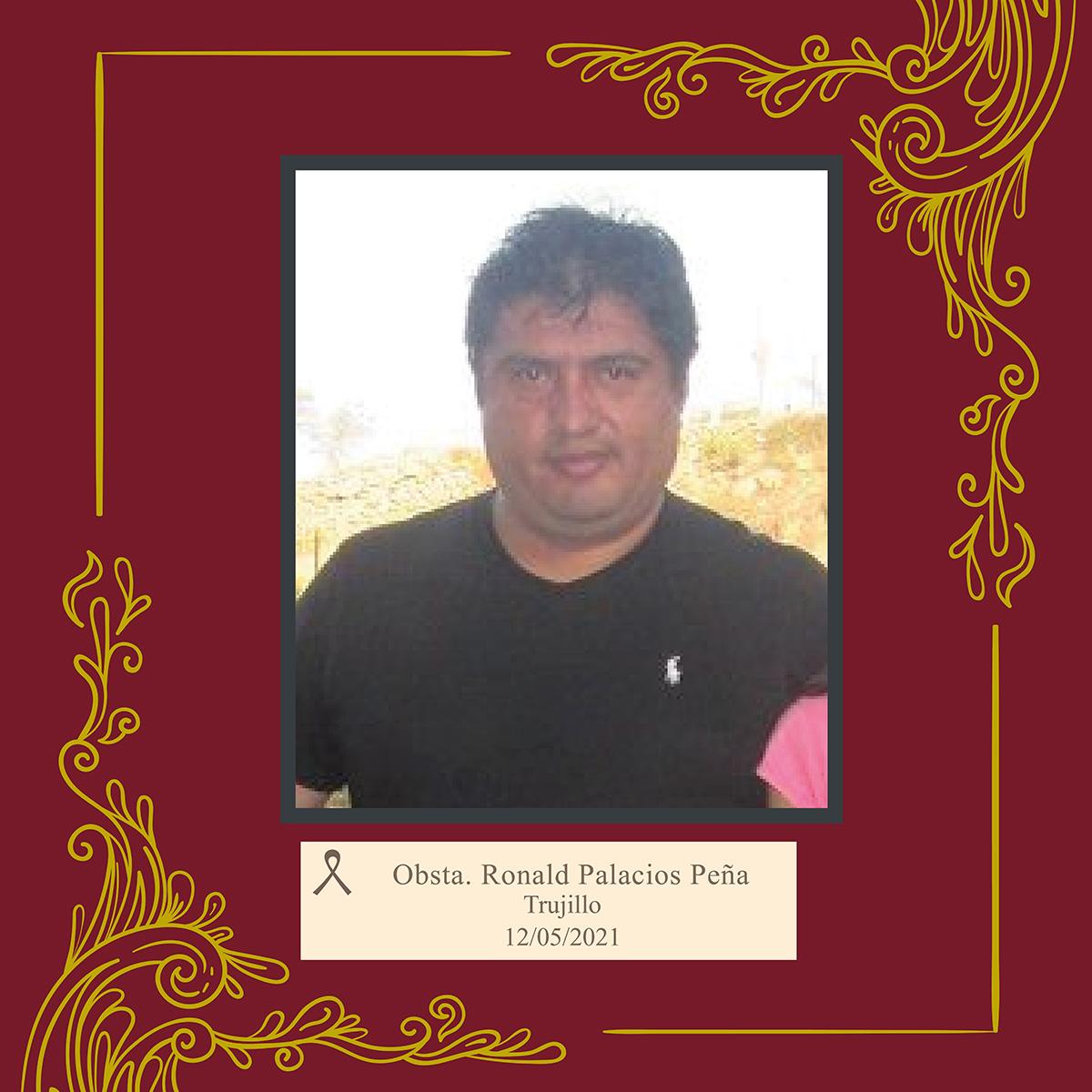 Ronald Carlos Palacios Peña