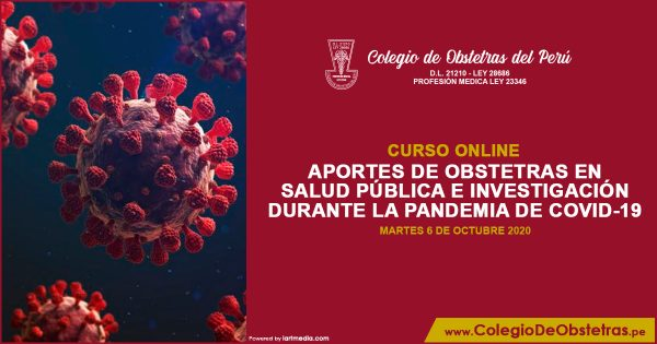 APORTES DE OBSTETRAS EN SALUD PÚBLICA E INVESTIGACIÓN DURANTE LA PANDEMIA DE COVID-19