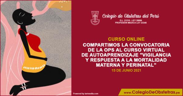 """Curso virtual  """"Vigilancia y respuesta a la mortalidad materna y perinatal"""""""