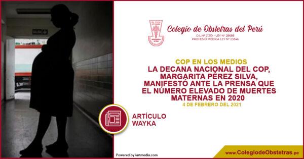 La decana nacional del COP, Margarita Pérez Silva, manifestó ante la prensa que el número elevado de muertes maternas en 2020 significa un retroceso para la salud materna
