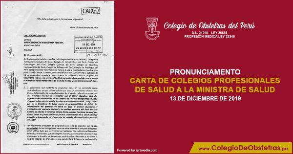 CARTA DE COLEGIOS PROFESIONALES DE SALUD A LA MINISTRA DE SALUD