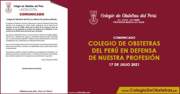 Colegio de Obstetras del Perú en defensa de nuestra profesión